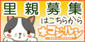 ネコジルシ 猫の里親募集