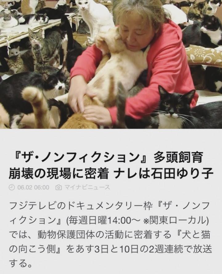 広島 救援 隊 みなし ご 犬 猫