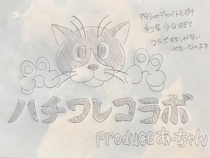 サラン ちゃん 猫